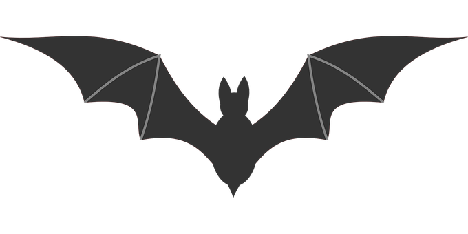 flying-bat