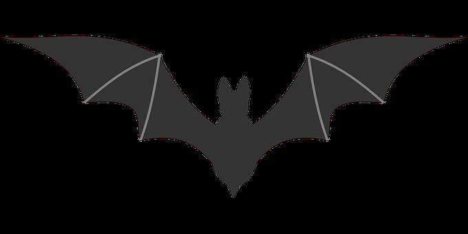 flying-bat